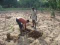Indien2006_8721