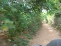 Indien2006_8740