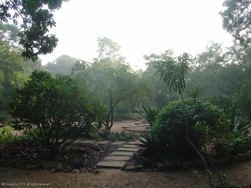 Indien2006_8459