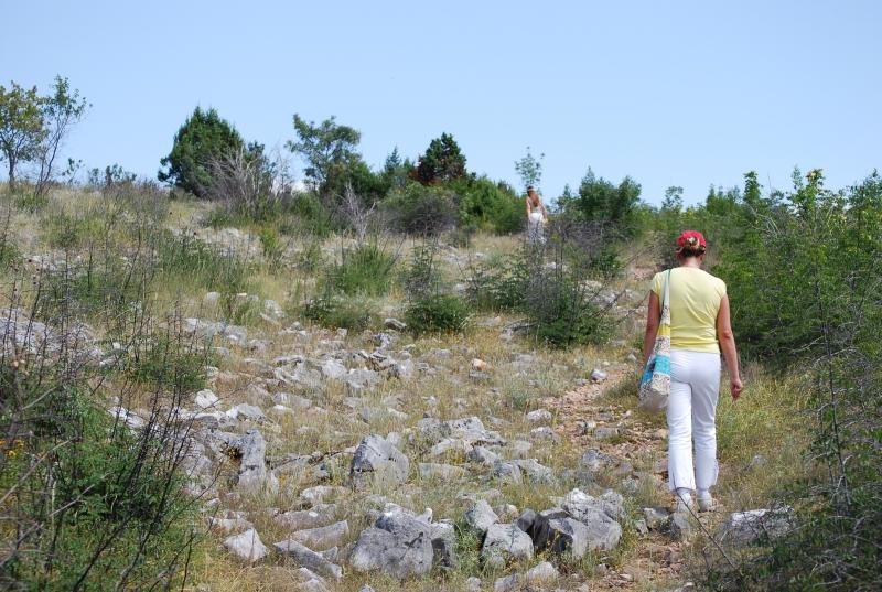 Kroatien-Drasnice Juli 2008145