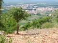 Kroatien-Drasnice Juli 2008142