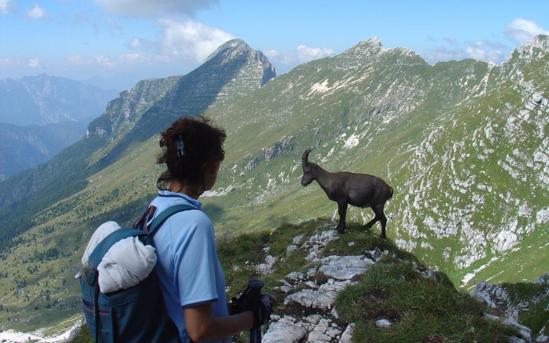 Cima di Terra Rossa (2.420m) – Italien
