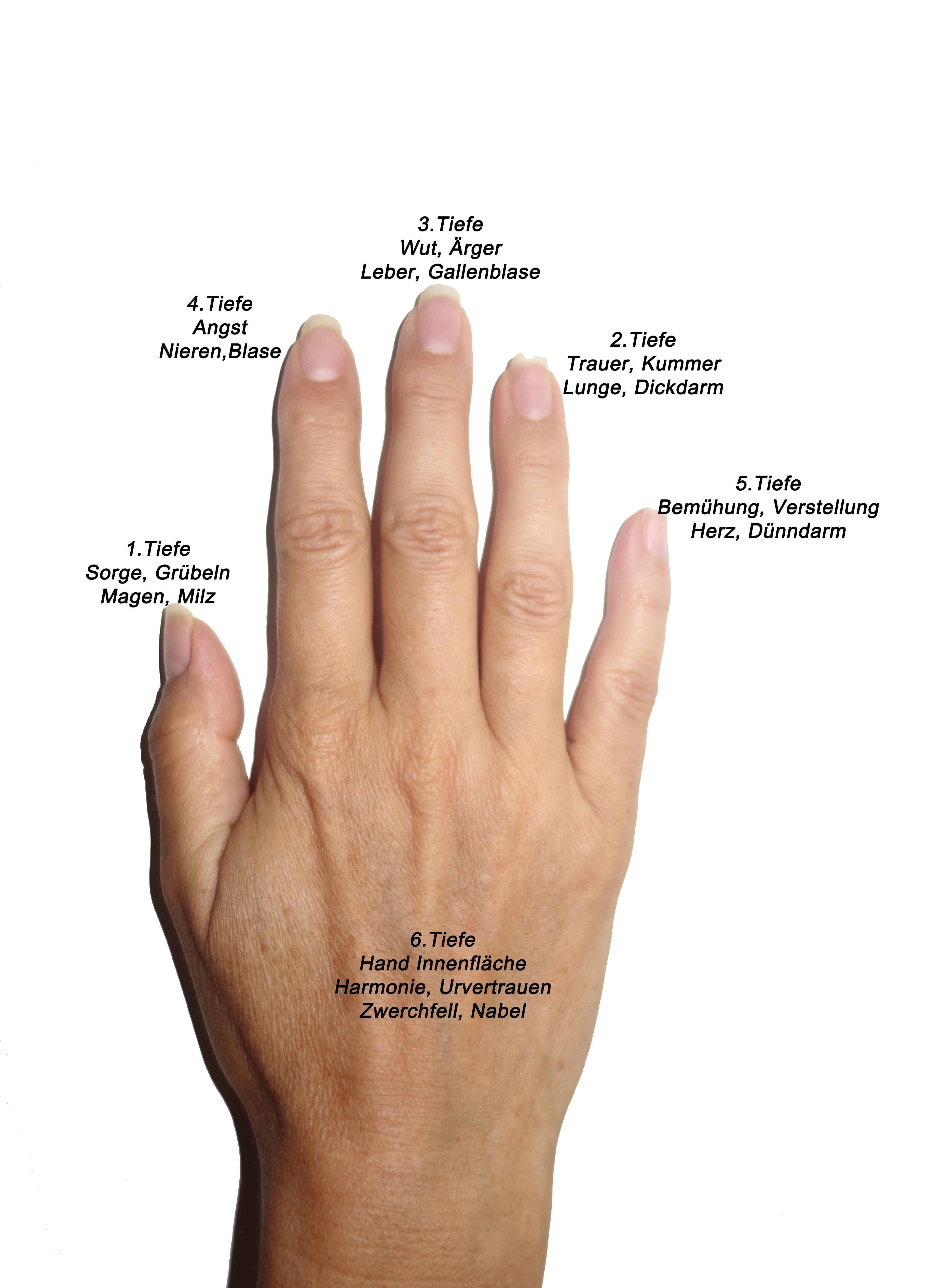 Jin Shin Jyutsu - die Bedeutung der Finger