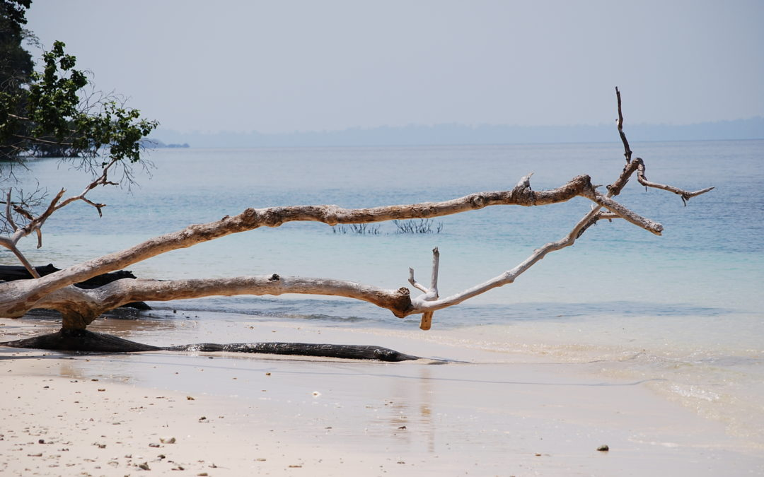 Andamanen – Impressionen